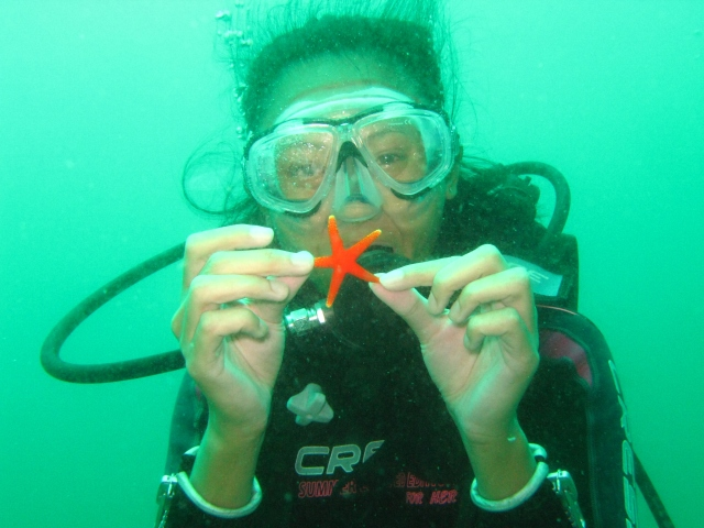 me and the starfish